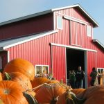 laity-pumpkin-patch-north-home
