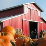 laity-pumpkin-patch-north-home