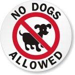 no dogs circle